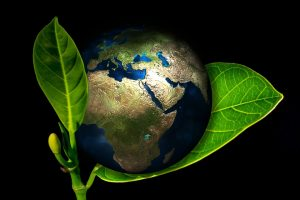 eco friendly london