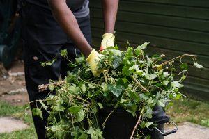 Garden-Clearance-in-London