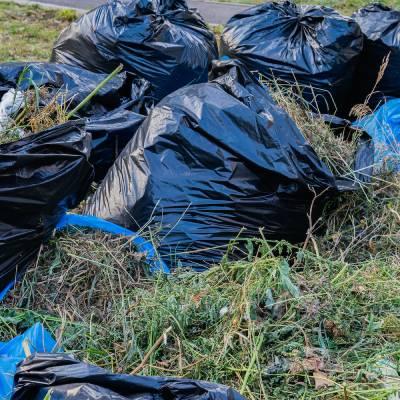 bags of garden rubbish in Birmingham