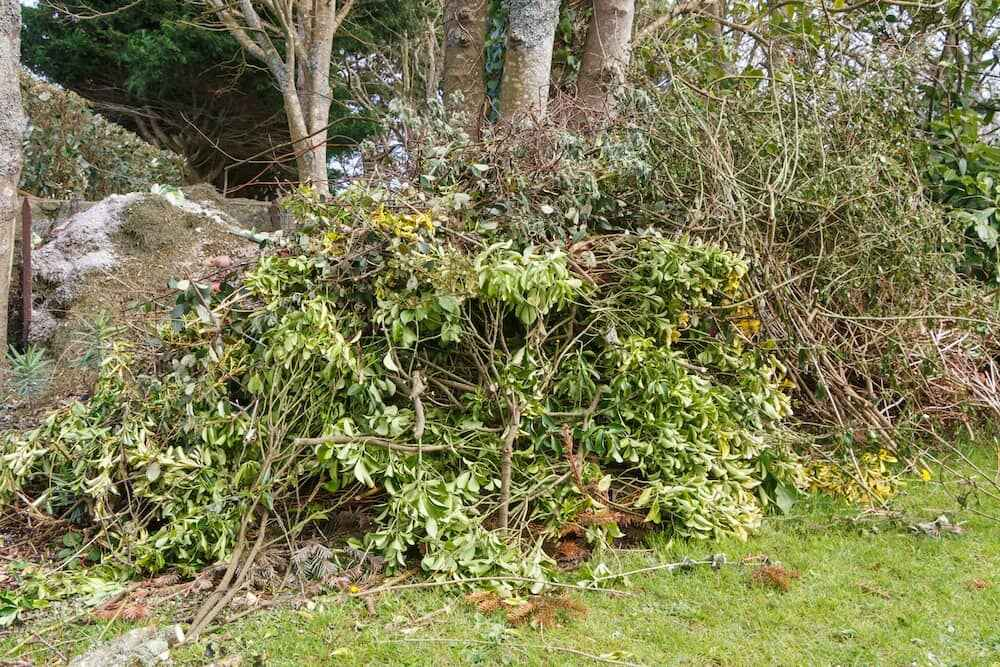 trees garden waste Birmingham